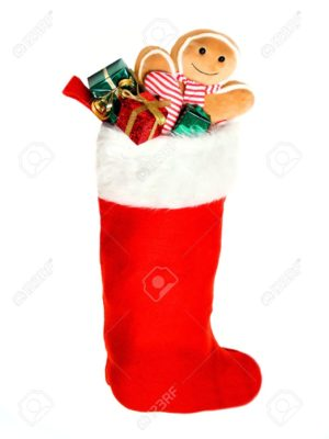 CatFish Kids Seasonal Filled Stocking